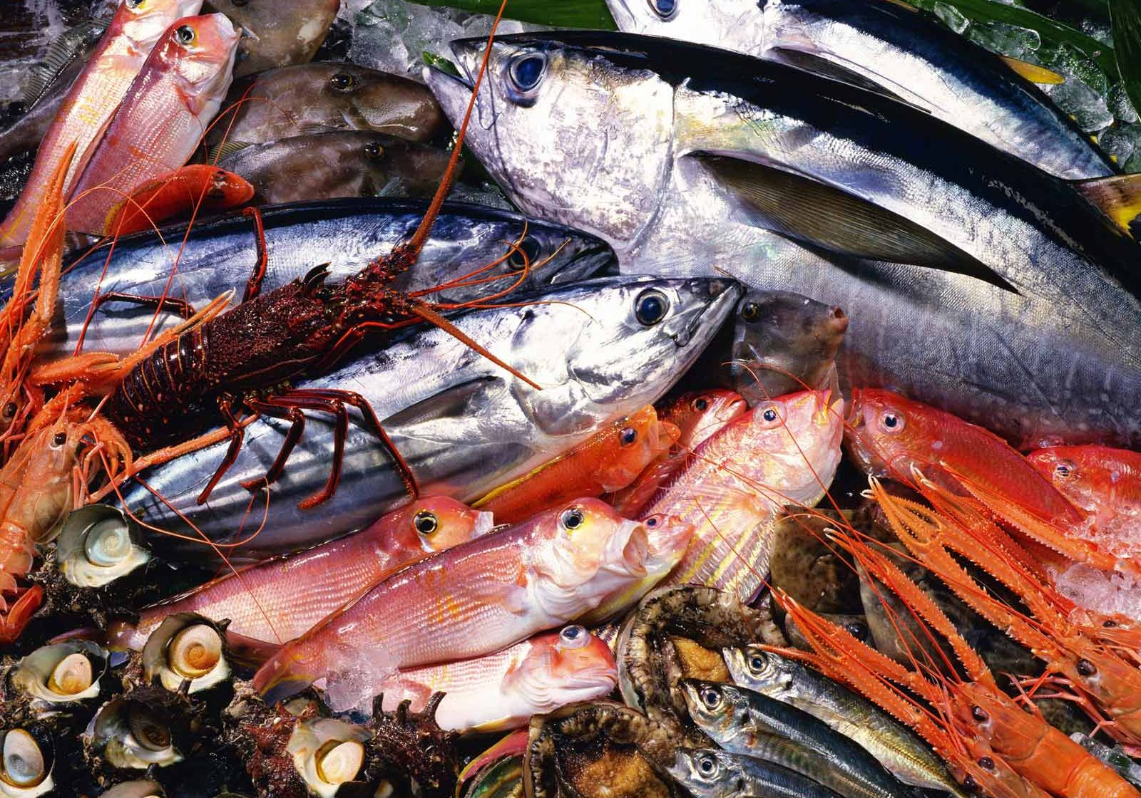 Seafood-Tray